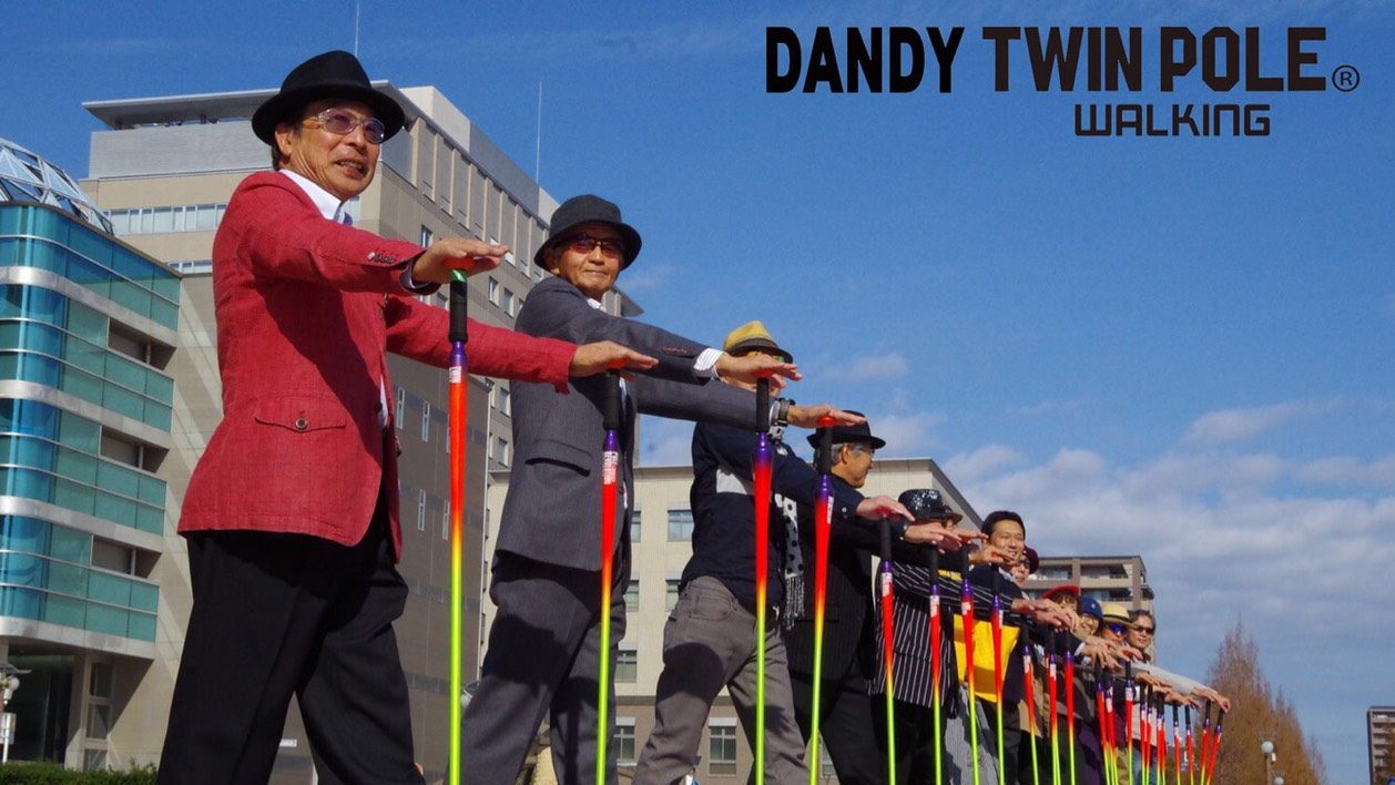 DANDY TWIN POLE